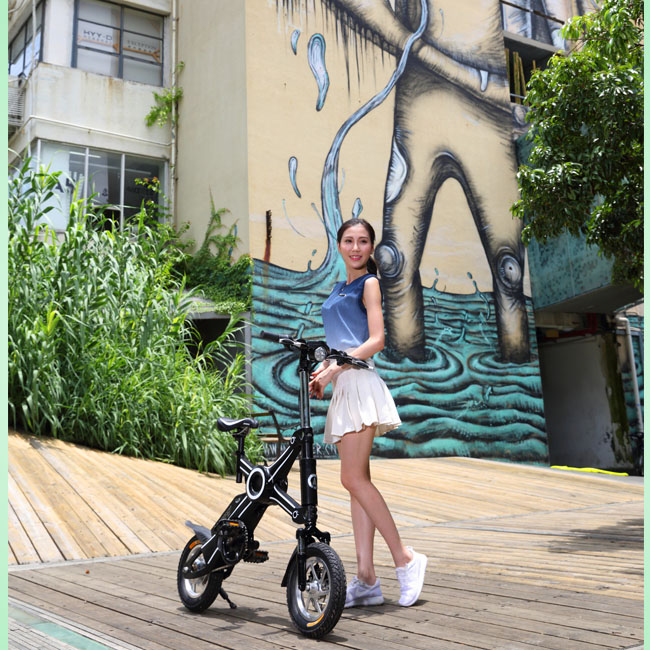 Hot sell 250w 36v green energy made in China adult fold electric bicycle