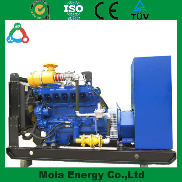 Customized Water-cooled 4-Stroke Generators Low Rpm Pmg