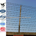 BWG Galvanized Barbed Wire Fence