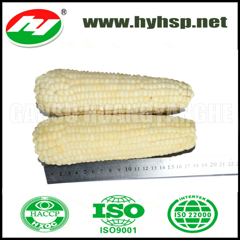 IQF Frozen White Glutinous Corn