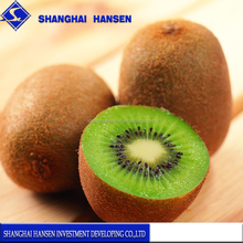 Import agent of New Zealand kiwi fruit