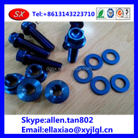 customized Chinese blue anodized titanium bolt and screws , supplier in dongguan