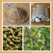 Chinese Herb Medicine Raw Material for treating gastro-enteritis Siberian Cocklebur Fruit Extract Powder