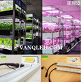Greenhouse Lamp 30w For Vertical Shelves 2017 Hot Sale Full Spectrum Red Blue Color Plant Light Waterproof Offer Customize