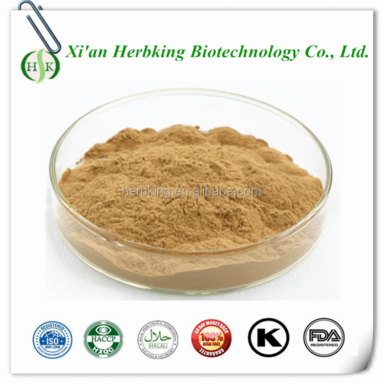 shiitake mycelia extract,pure AHCC,Active Hexose Correlated Compound powder
