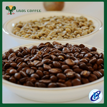 Good price arabica coffee grain with great