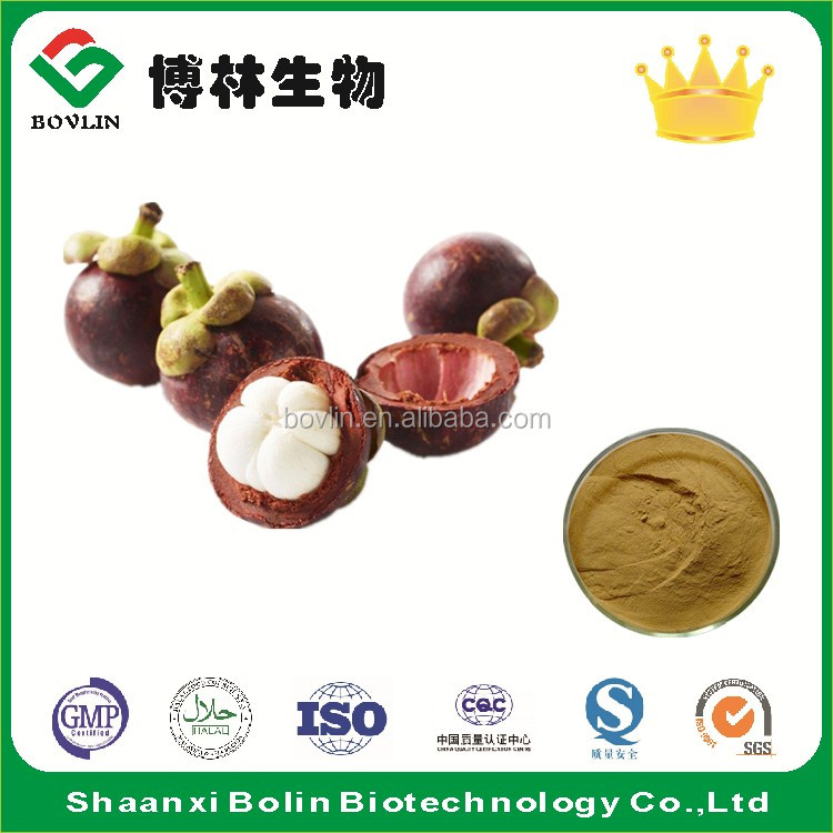 Bolin Supply Mangosteen Puree Extract Powder Polyphenol 20%