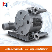 Polymer Cement Mortar Pump 6000L/Hr Peristaltic Pump,OEM Supplier