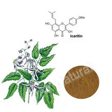 Super Epimedium Brevicornum Maxim Extract to cure deficiency of the kidney