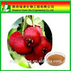 100 Pure Natural Hawthorn Berry Extract