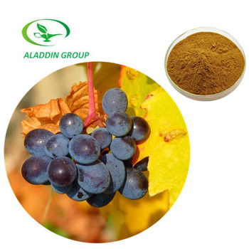 95% Proanthocyanidins Pure Grape Seed Extract