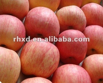 Red fuji apple fruit exporter from China