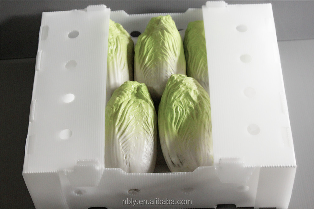 FDA standard fruit corrugated cardboard box vegetable corflute plastic corrugated storage box