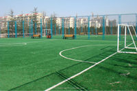 evergreen synthetic artificial grass turf for football field grass in school