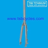 mini bike front fork TSB-FK04