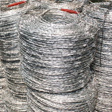 Electro galvanized decorative barbed wire fencing