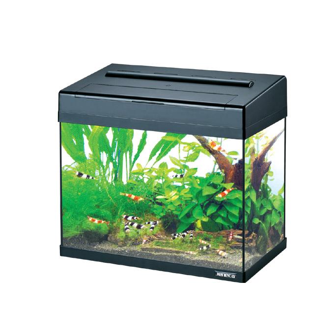 Jeneca Aquarium Fashion Mini Fish Tank With Led Lighting