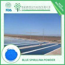 Best price Blue Pigment Phycocyanin for hot sale