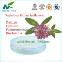 prevent colon cancer isoflavone powder from red clover extract