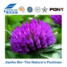 Top quality Natural Isoflavones 40% Red Clover Extract from Trifolium pratense L