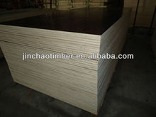 china film faced plywood wbp glue middle east market