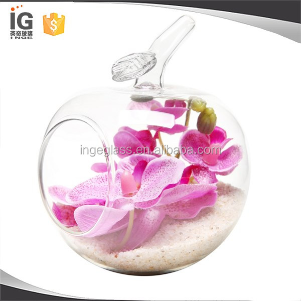 Pear Apple Shaped Terrarium Glass Flower Vase Decorative Vases