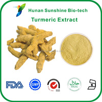 Curcumin Extraction Plant 98% Curcumin HPLC with Good Price