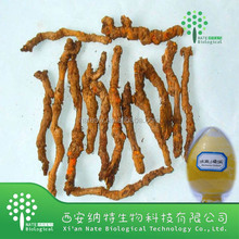 High Quality Natural Coptis Chinensis Extract 98% Berberine