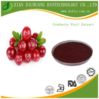 Factory Supply Natural Cranberry Fruit Extract Proanthocyanidin Cranberry Fruit P.E