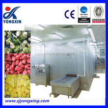 China IQF Quick Freezing Food Machinery Vegetable Processing IQF Fluidized Tunnel