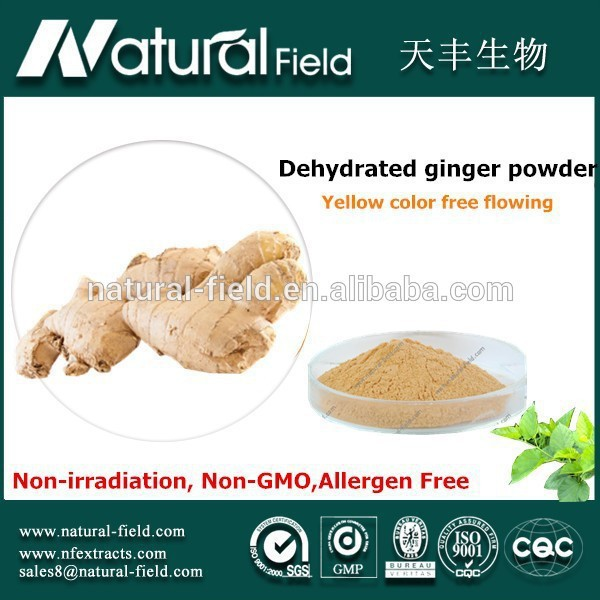 Large-scale plant base high quality dehydrated ginger root powder