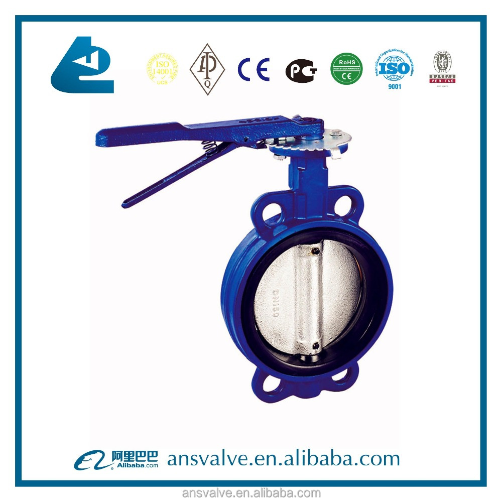 1 inch butterfly valve