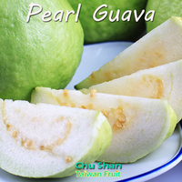 Best quality sweet fresh Guava from Taiwan