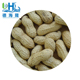 Shandong dry roasted peanut in shell for export