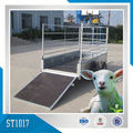 Fence Sheep Trailer