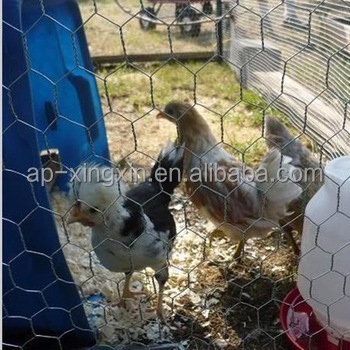 bird cage wire mesh chicken wire mesh wire mesh for chicken coop