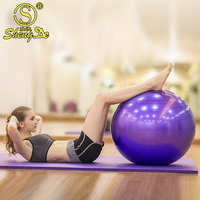 Increase Stability pvc yoga ball,private label exercise ball,ball gym