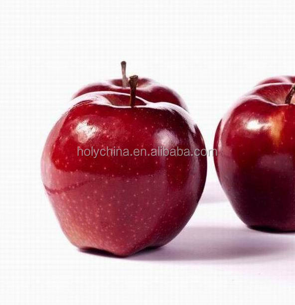 hot sale high quality wood apple fruit