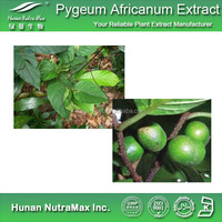 Get Free Sample Pygeum Africanum Bark Extract 4:1~20:1