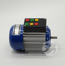 3 Phase AC Squirrel Cage Induction Motor