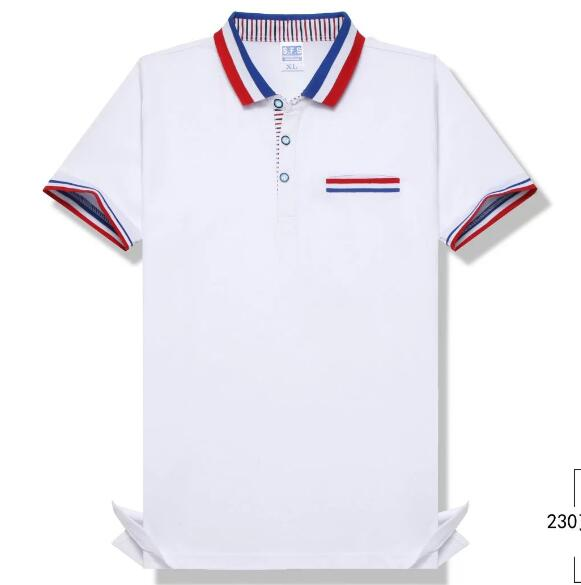 <strong>D</strong> type High quality custom polo shirt blank oem for promotion