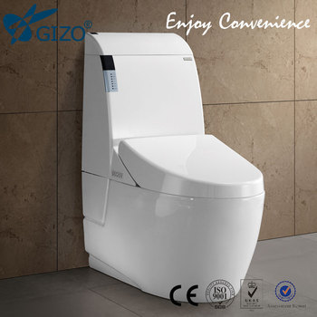 Handicapped Convenient Toilet/Automatic Smart Toilet