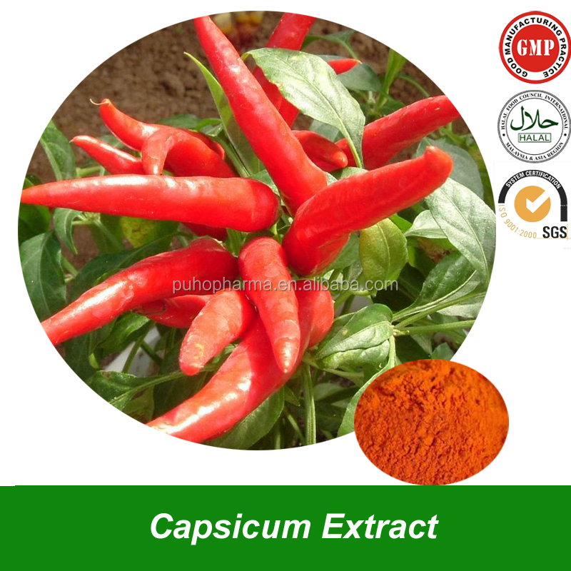 Pure Natural Oleoresin Capsicum Extract Powder from Capsicum Plant Benefit for Weight Loss