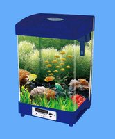 aquariums fish tank