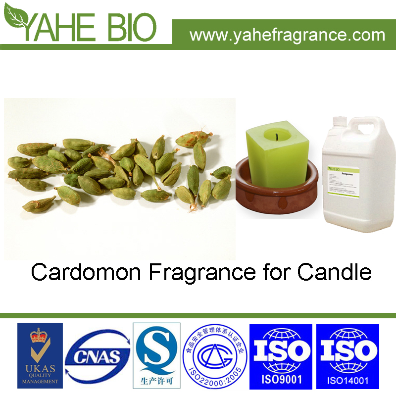 Hot selling Cardamon fragrance oil for wax candle flavoring