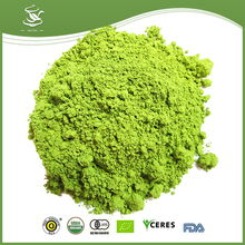 Wholesale Organic Matcha Tea Powder Instant Tea