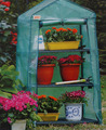WALK IN OUTDOOR GARDEN GREENHOUSE SHELVES PLASTIC COVER STEEL FRAME MINI, LARGE