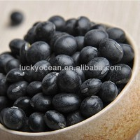 chinese black kidney beans 2015 Crop