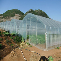 Tropical Multi Span Greenhouse For Vegetable