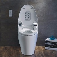 Latest new design best price automatic ceramic smart toilet racer